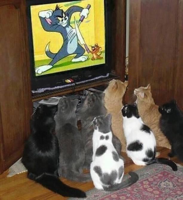 Katinai
