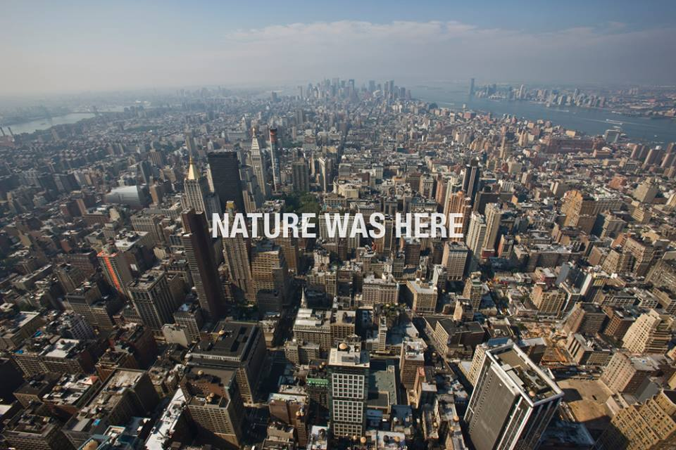 Čia buvo gamta